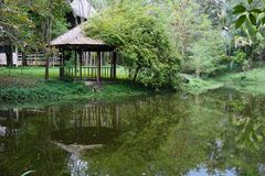 Hölzerner Pavillon des alten Teakholzes nahe dem Teich Stockfotografie