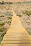 Hölzerner Pfad in der Wüste Stockbilder