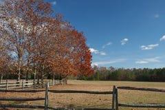 Hölzerner Pferdezaun, der eine große Wiese mit buntem autu umgibt Lizenzfreies Stockfoto