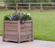 Hölzerner Pflanzer mit purpurroten Blumen lizenzfreie stockfotos