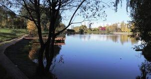 Hölzerner Pier auf dem Teich stock video
