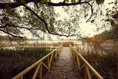 Hölzerner Pier mit Blättern und Baumasten Lizenzfreies Stockfoto
