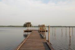Hölzerner Pier und Baum im Soustons See, Landes Lizenzfreie Stockbilder