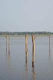 Hölzerner Pier und Baum im Soustons See, Landes Stockbild