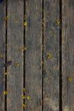 Hölzerner Planken-Hintergrund lizenzfreie stockfotografie