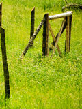Hölzerner, rostiger Zaun auf einem Grün, Landschaftsgras Stockbilder