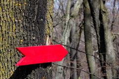 Hölzerner Signpost stockbild