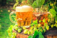 Hölzerner Stamm des Bieres mit zwei Bechern stockfotografie