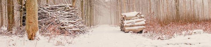 Hölzerner Stapel im Wald an der Winterzeit Stockbilder