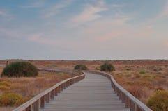 Hölzerner Steg in den Dünen, Algarve, Portugal, bei Sonnenuntergang Lizenzfreies Stockfoto