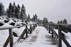 Hölzerner Steg im Schnee, Vitosha-Berg, Bulgarien stockfotografie