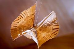 Hölzerner Vogel des Glückes Russisches altes traditionelles Spielzeug Lizenzfreie Stockfotos