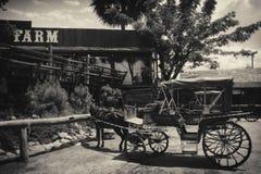 Hölzerner Wagen der Weinlese im Bauernhof stockbild