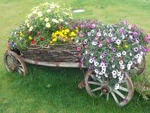 Hölzerner Warenkorb voll von Blumen Stockbilder