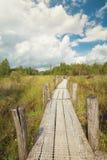 Hölzerner Weg auf Sumpf Stockbilder