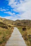 Hölzerner Weg, der zu Glenfinnan-Viadukt, schottische Hochländer, Großbritannien führt lizenzfreies stockfoto