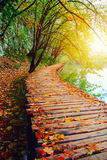 Hölzerner Weg im Nationalpark Plitvice Lizenzfreie Stockfotografie