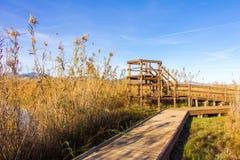 Hölzerner Weg und Turm in einem Vogelobservatorium, im Sumpfgebietnaturpark La Marjal in Pego und in Oliva lizenzfreies stockfoto