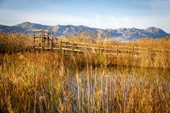 Hölzerner Weg und Turm in einem Vogelobservatorium, im Sumpfgebietnaturpark La Marjal in Pego und in Oliva lizenzfreie stockfotos