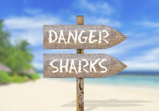 Hölzerner Wegweiser mit Gefahrenhaifisch Lizenzfreie Stockfotos