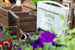 Hölzerner Weinleseartkasten für Blumen und Anlagen in einem Blumenkennzeichen Lizenzfreie Stockfotos