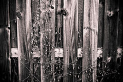 Hölzerner Zaun Stockbilder