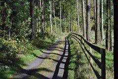 Hölzerner Zaun in einer Forstwirtschaft Stockbild