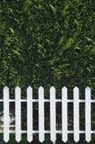 Hölzerner Zaun mit Hecke stockbild