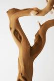 Hölzernes Blatt der alten Barke des Baums verlässt Pflanzer Stockfotos