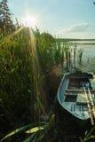 Hölzernes Boot mit Rudern in den Schilfen auf dem Ufer des Sees an einem sonnigen Tag in der Landschaft stockfotos