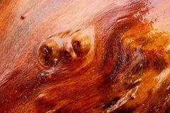 Hölzernes braunes rotes Hintergrundbeschaffenheitsmuster Nasse abstrakte Holzoberfläche mit hellen Reflexionen Stockfoto