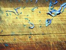 Hölzernes Brett, auf dem die Blumenblätter des Schneeglöckchens zerstreut werden Stockfotos