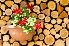Hölzernes Brett, hölzerner Stapel mit Blumen, Dekoration stockbilder