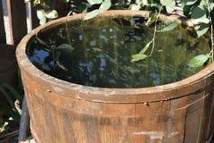 Hölzernes Fass gefüllt mit Wasser Stockfoto