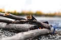 Hölzernes Feuer in Alaska mit Hälfte gedrehten Fall-Bäumen lizenzfreies stockbild