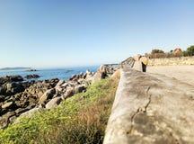 Hölzernes Geländer nahe bei dem Ozean lizenzfreies stockbild