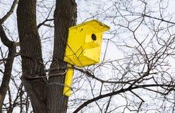 Hölzernes gelbes Vogelhaus auf einem hohen Baum im Park Lizenzfreies Stockfoto