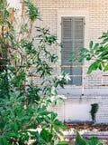 Hölzernes graues Fenster eines weißen Wohnungsbau façade Lizenzfreie Stockbilder