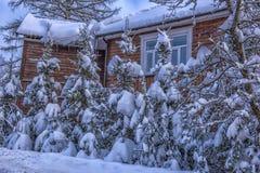 Hölzernes Häuschen schneebedeckt im Winter und in den Bäumen in den Schneefällen stockfotografie