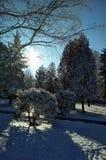 Hölzernes Haus abgedeckt durch einen Schnee in einem Wald Stockbild