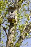 Hölzernes Haus für die Vögel Stockbilder