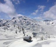 Winter in Vogel Stockbild