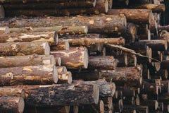 Hölzernes Kiefernstaplungsbauholz für Baugebäude Stockfotografie