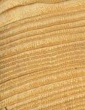 Hölzernes Kornkreuz schnitt Beschaffenheit, Kiefernholz die Beschaffenheit des Holzes, Rissausschnitt Lizenzfreies Stockbild