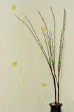 Hölzernes Kornschmetterlingsbild und Weißbaum mit vier Hintergründen Stockbilder