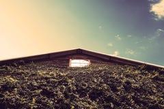 Hölzernes Lager mit eco freundlicher grüner Wand mit blauem Himmel in der Landschaft Stockbilder