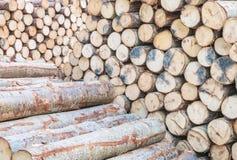 Hölzernes Muster der Nahaufnahme am Stapel des alten hölzernen Bauholzes maserte Hintergrund Lizenzfreies Stockfoto