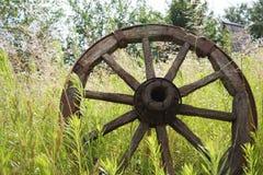 Hölzernes Rad auf einem Hintergrund des grünen Grases Lizenzfreie Stockbilder