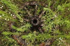 Hölzernes Rad auf einem Hintergrund des grünen Grases Stockfotografie
