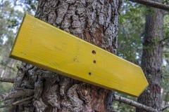 Hölzernes Richtungszeichen auf einem Baum Stockbild